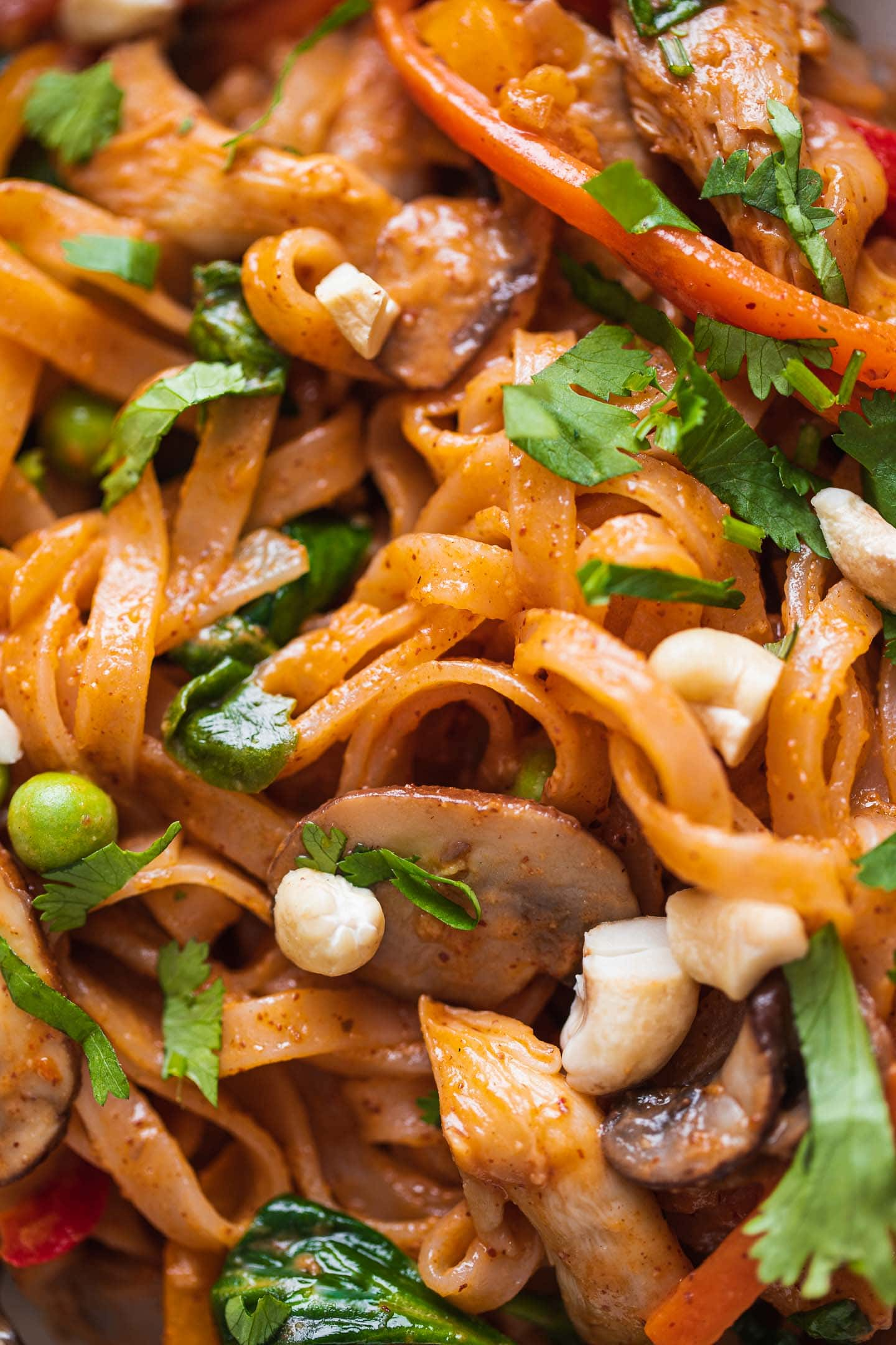 Closeup of a stir-fry with vegetables and rice noodles