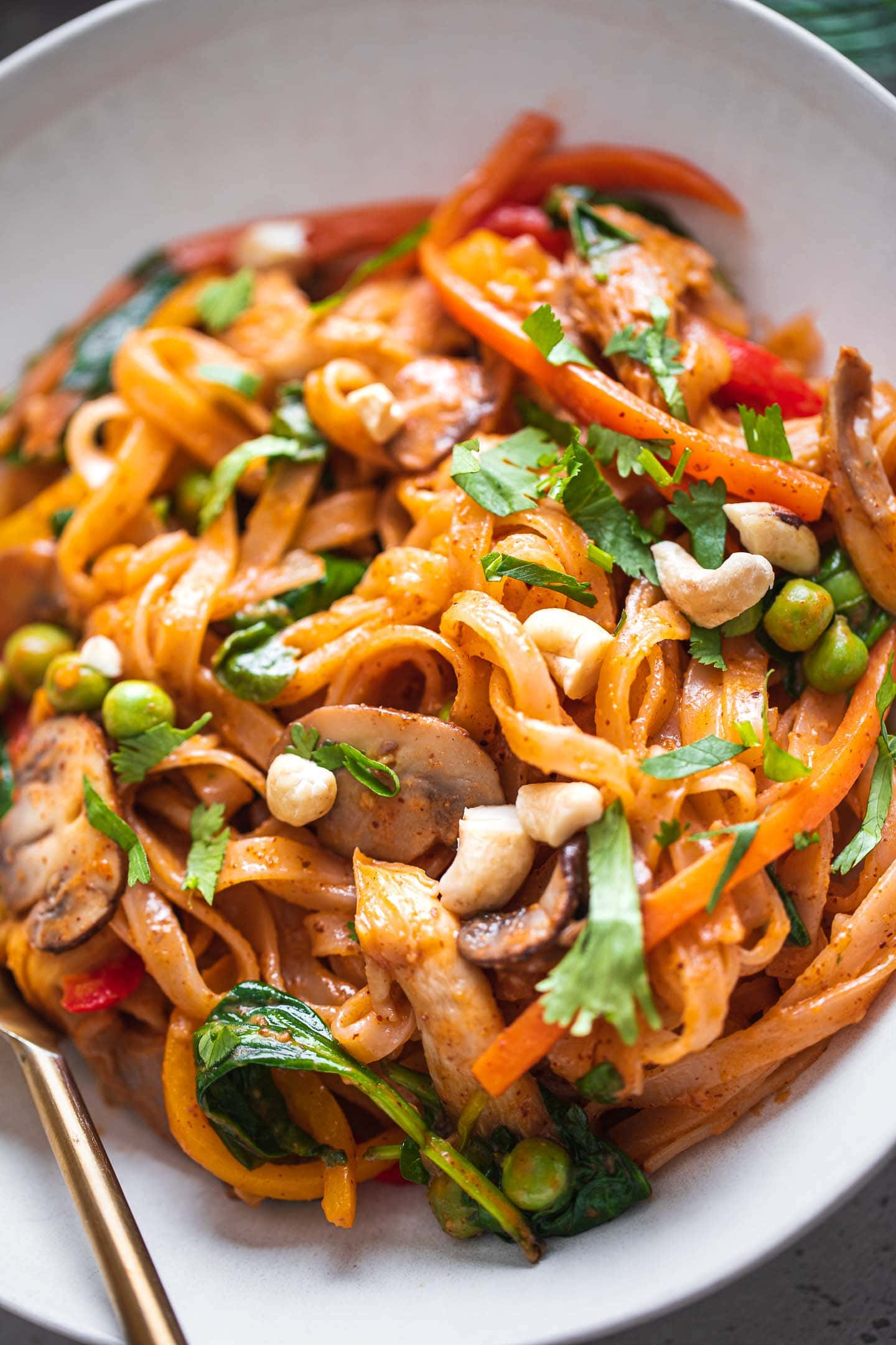 Closeup of stir-fried noodles with vegetables and coconut sauce