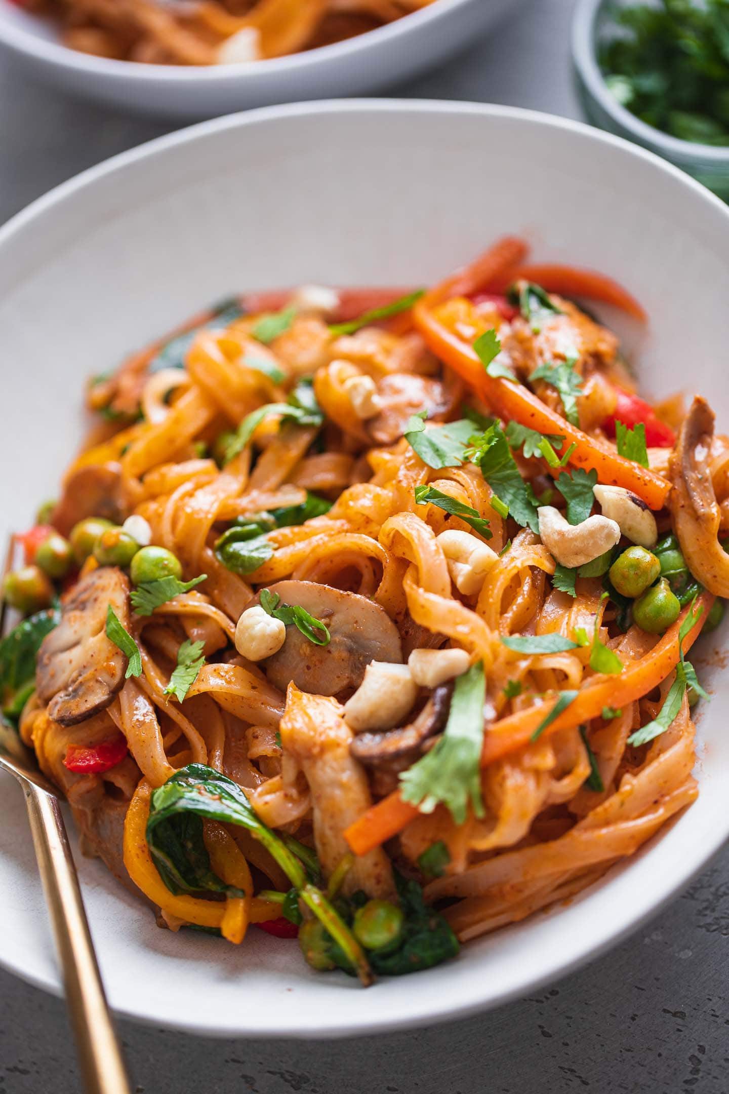 Coconut vegetable stir-fry with rice noodles