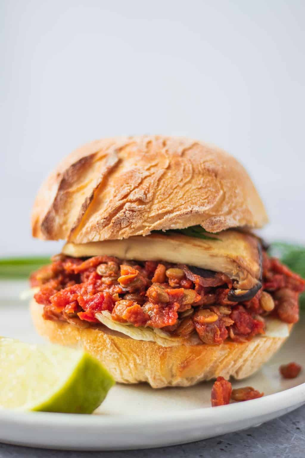 Closeup of sloppy joe burger