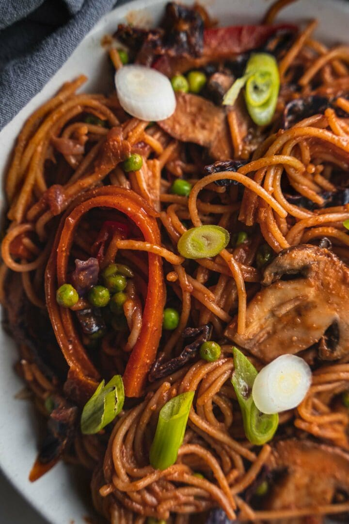 Closeup of spaghetti with spring onion in a bowl