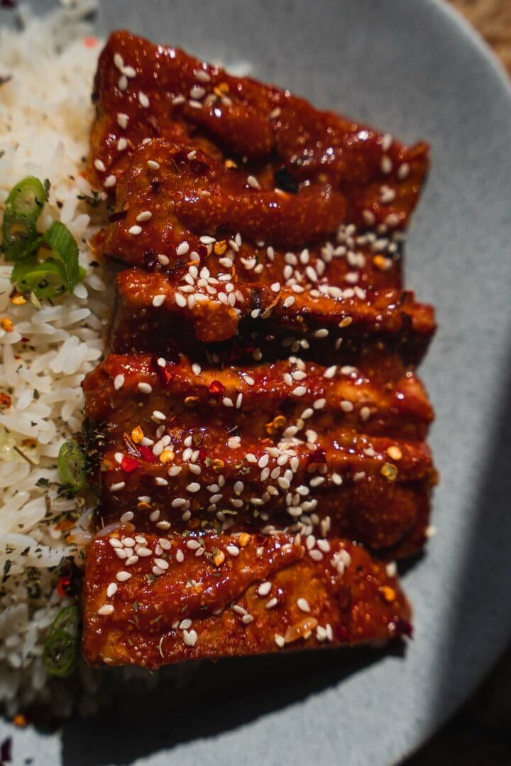 Tempeh in a spicy sauce with rice