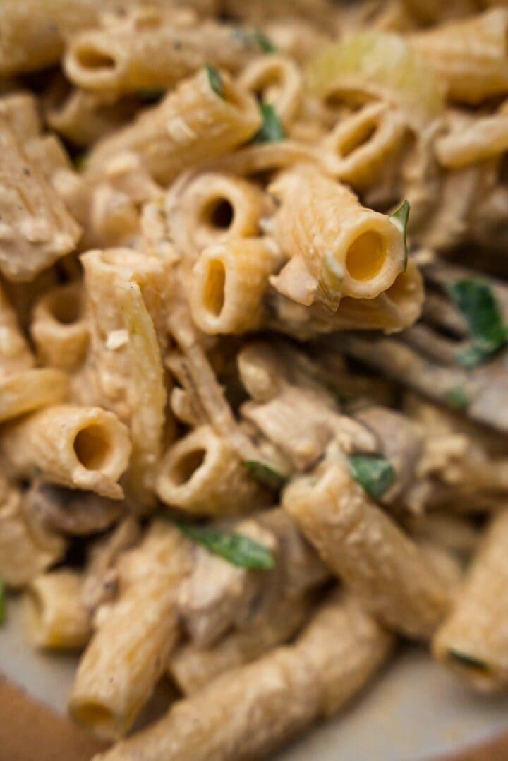 Bowl of vegan pasta with a creamy sauce